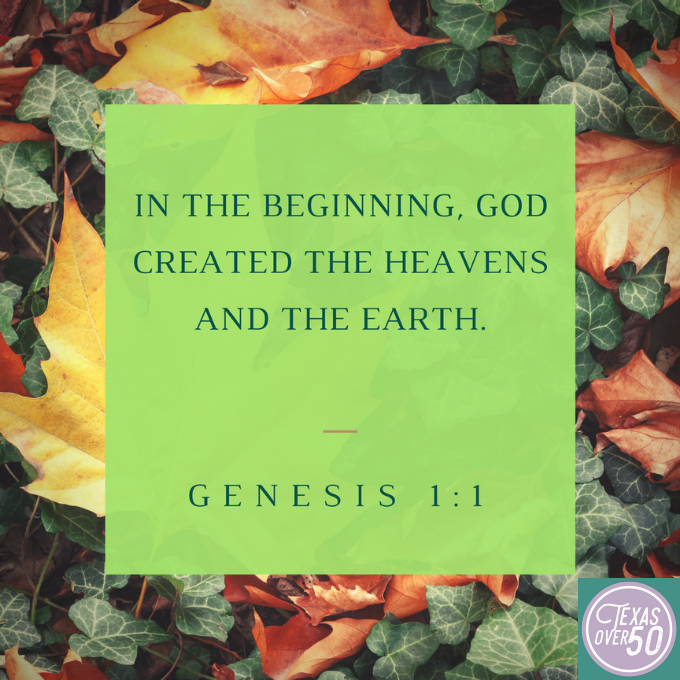 Genesis 1:1 66 Verses to Memorize With Your Granddaughter