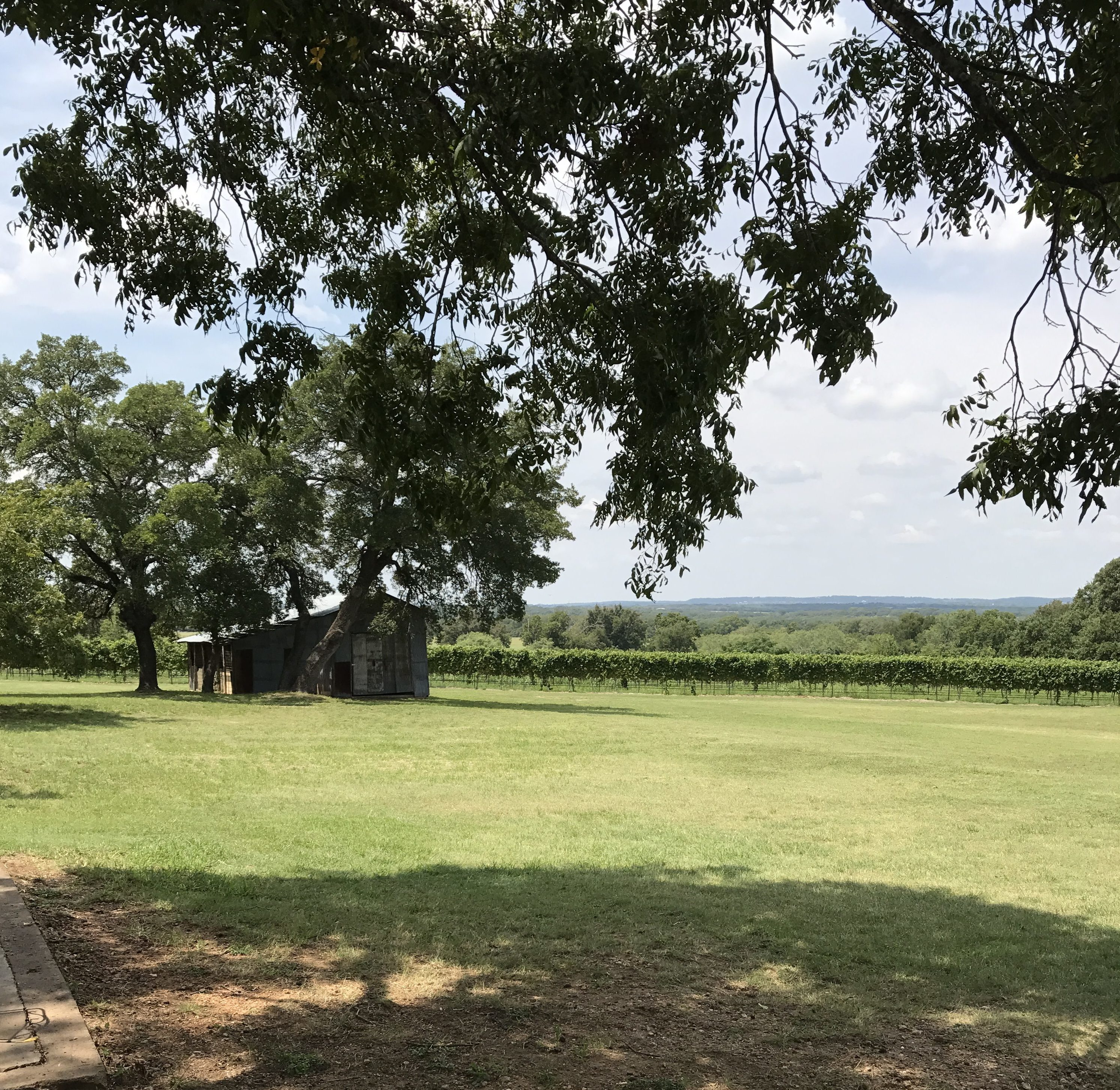 William Chris Vineyards - An Anniversary Weekend in Johnson City, Texas
