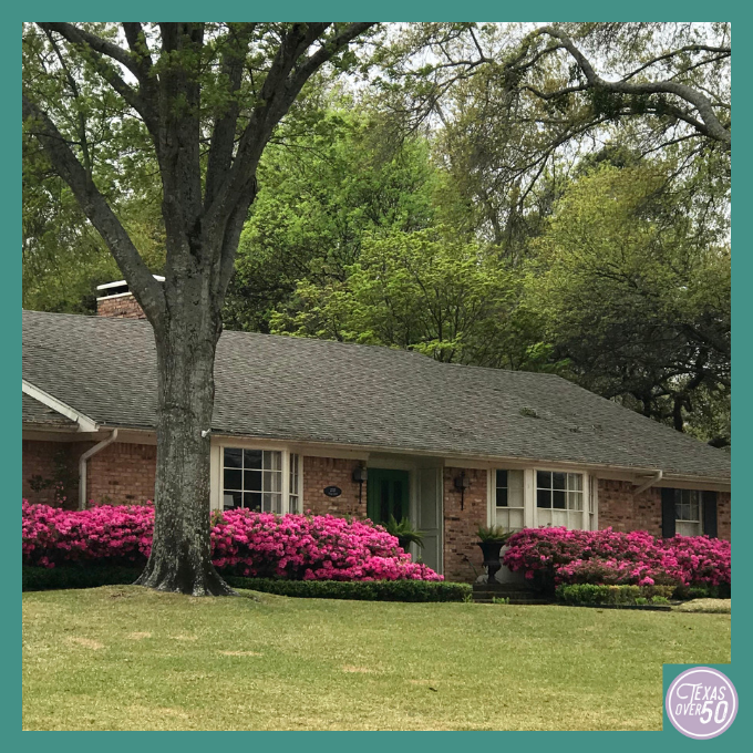 Make Plans Now to See the Azaleas in Tyler Next Spring