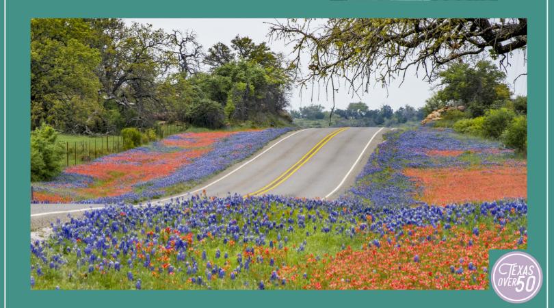Texas Day Trip
